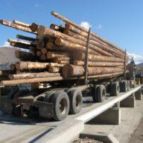 METTLER TOLEDO 7563 truck scale